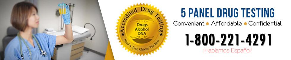 5 Panel Drug Test Alaska