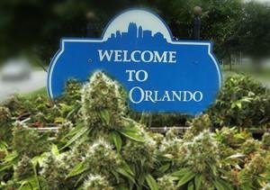 Orlando Decriminalizing Marijuana