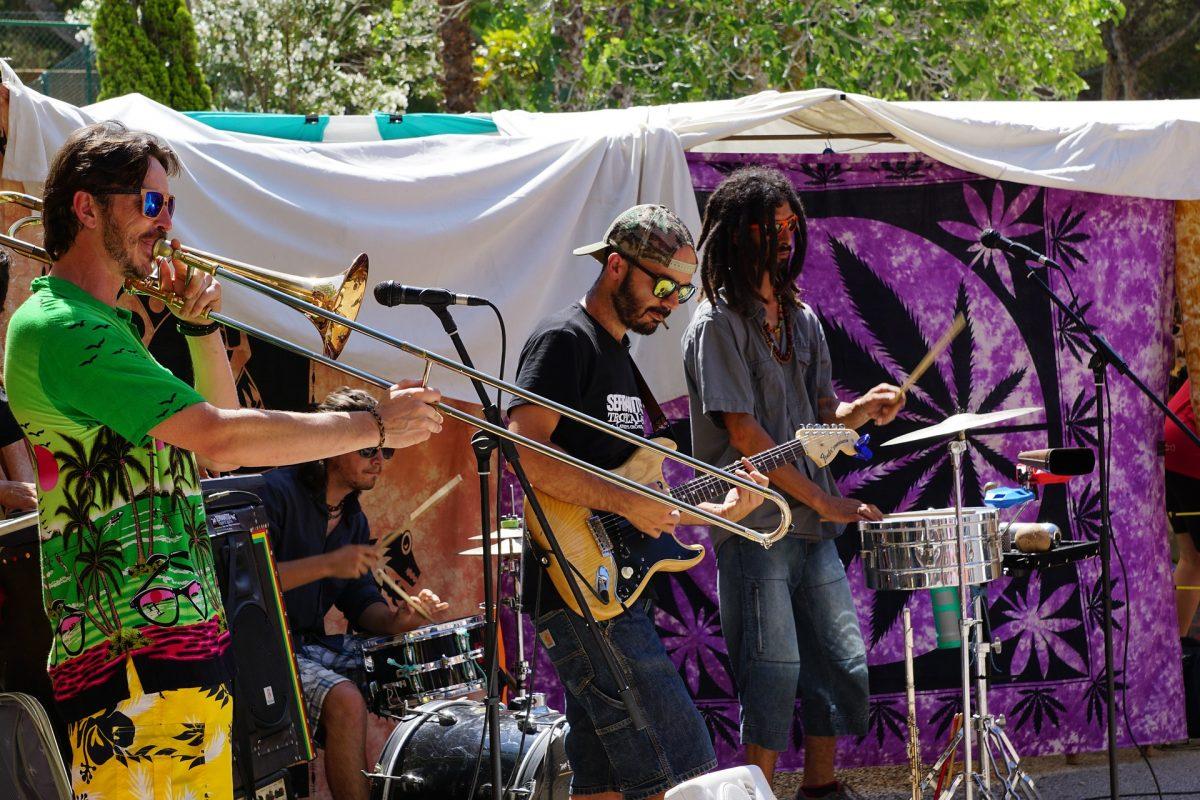 music festival drug testing